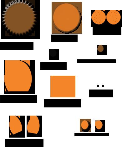 Lion Parts